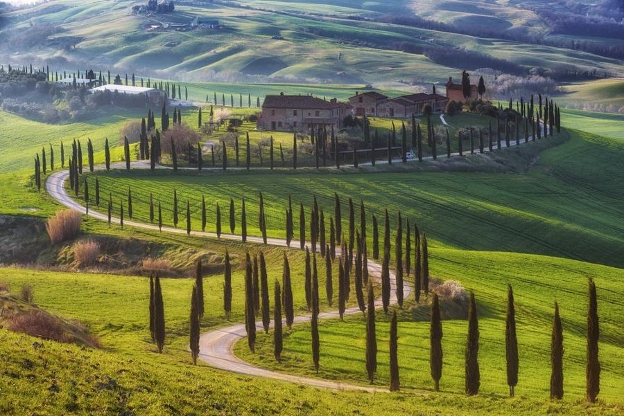 Tuscan_Cypresses_Road-1-1